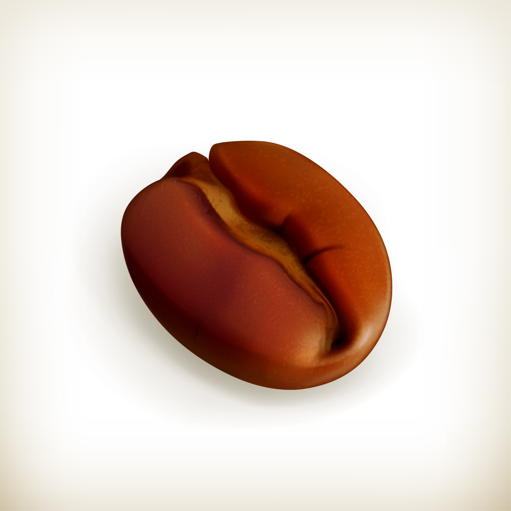 Roasted coffee bean, vector